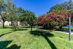 Campus Closed Empty Hammocks by Evan Musgrave