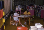 Students Study in the Lewis Library by College of Boca Raton