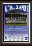 2009 NCAA Division II Men's Baseball National Champions by Lynn University