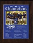 2019 NCAA Division II Men's Golf National Champions by Lynn University